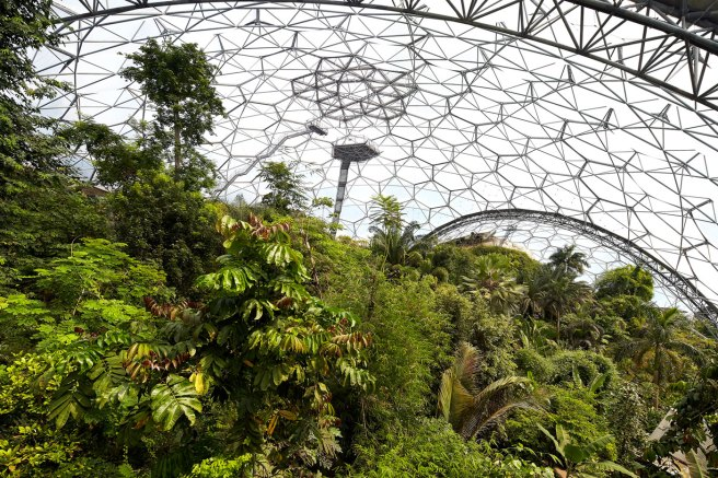 rainforest-biome-eden-project-2015-©Hufton+Crow-004.jpg